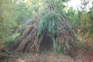 wickiup-at-onelife