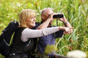 birdwatching-adults