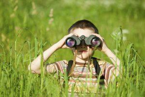 child-bird-watching