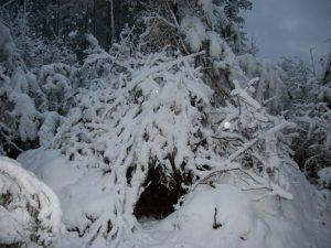 wickiup-snow3